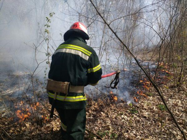 Верховная Рада в 18 раз повысила штрафы за сжигание сухой травы и листьев