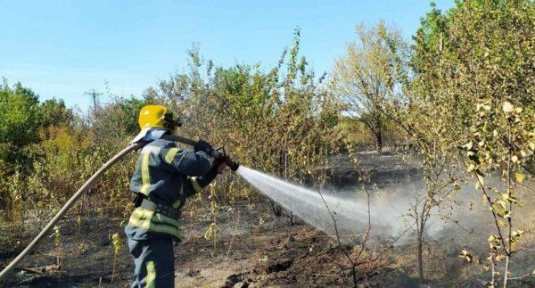 За сутки александрийские спасатели потушили три пожара (ФОТО)