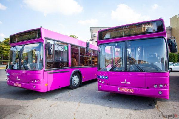 Исполком поддержал решение о создании в Александрии коммунального автобусного транспорта