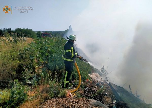 В Александрийском районе горело 200 квадратных метров сухой травы и крыша летней кухни (ФОТО)