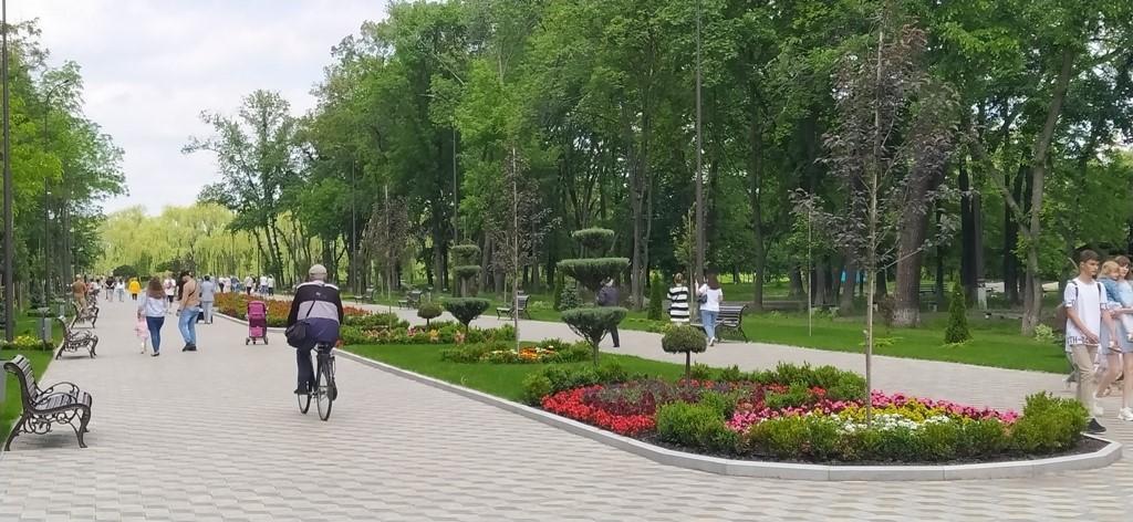 Городской голова Александрии показал, как меняется парк Шевченко (ВИДЕО)