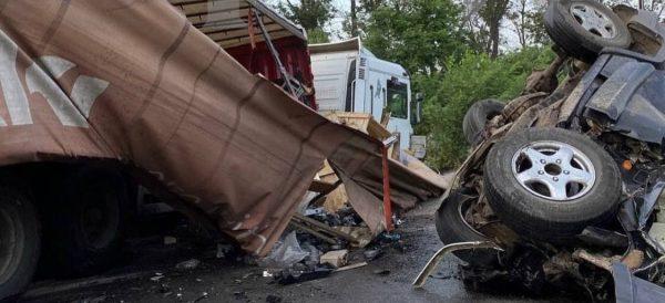 Три женщины погибли в ДТП под Александрией