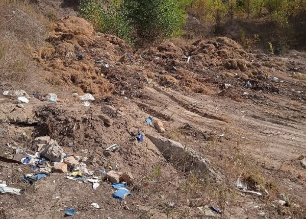 Александрийцы на месте карьера устроили мусорную свалку