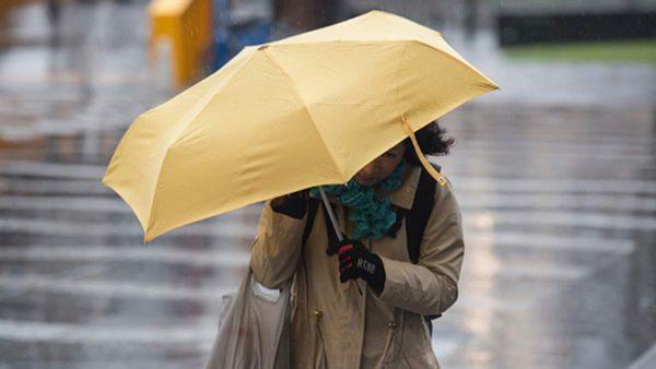 Штормовое предупреждение: в Кировоградской области прогнозируют дожди и сильный ветер