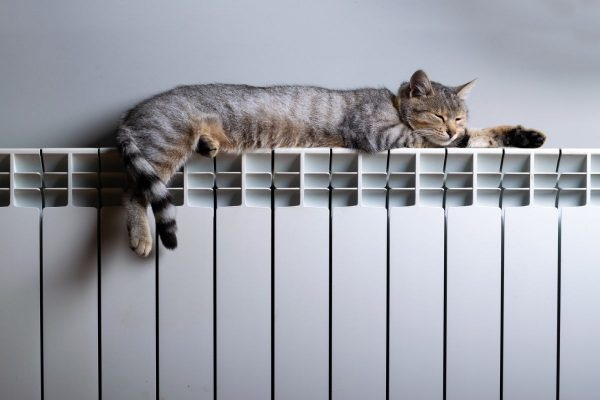 Новый отопительный сезон: сколько тепло будет стоить для александрийцев